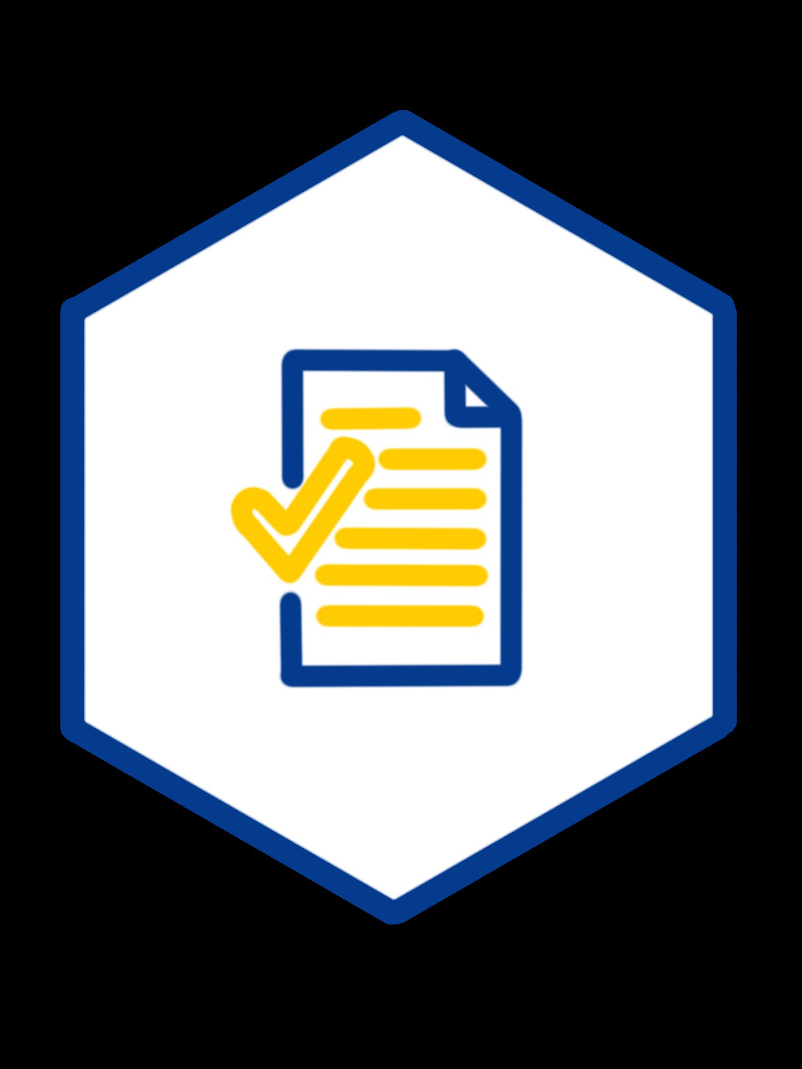 controllo e revisione del progetto di consulenza